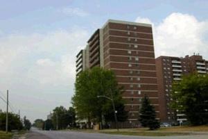60 Stevenson Rd, Toronto