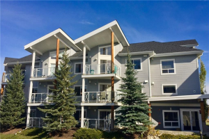 #209 390 MARINA DR , Chestermere
